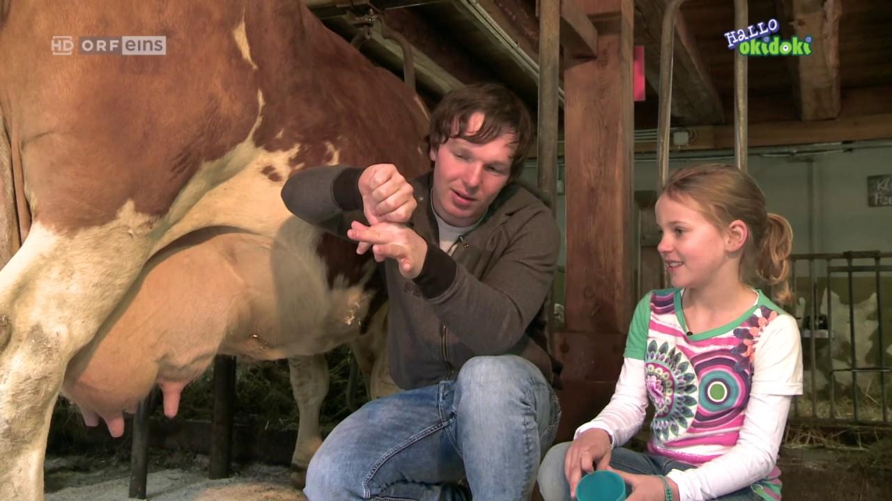 The little famer at the Matlschweiger farm